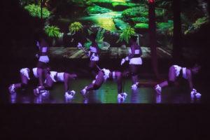 Twerk dance, Danze Etniche (twerk)